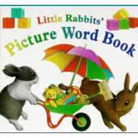 Little Rabbit's Picture Word Book - HB
