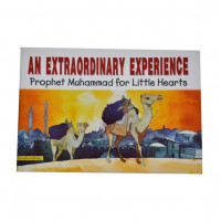 An Extraordinary Experience(Paperback)