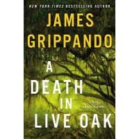 A Death in Live Oak (Jack Swyteck, Bk. 15) by Grippando, James
