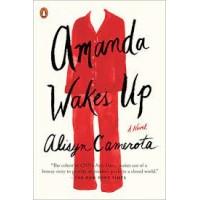 Amanda Wakes Up by Camerota, Alisyn-Paperback