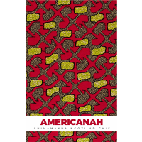 Americanah- Paper Back