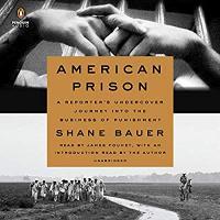 American Prison: A Reporter's Undercover Journey