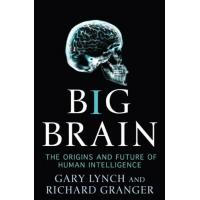Big Brain: The Origins and Future of Human Intelligence HB